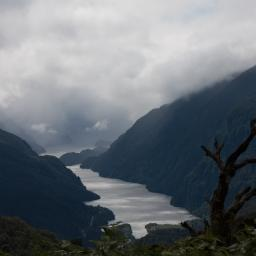 670m above sea level. Looking to Doubtful Sound