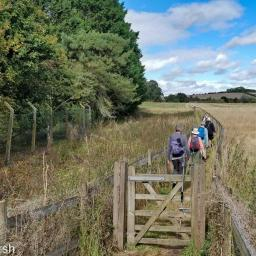 Walk: Compton - Aldworth