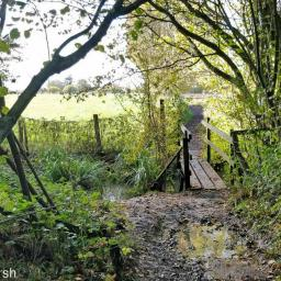 Walk: Cumnor Appleton