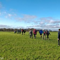 Walk: Steventon to Ardington