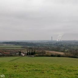 Walk: Whittenham Clumps