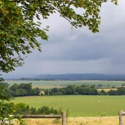 Walk: Ardington, Lockinge, Ridgeway