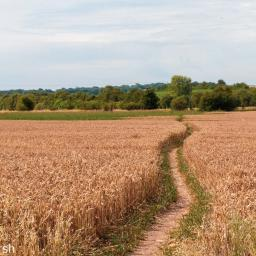 Walk: Churn Aldworth