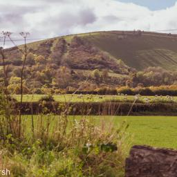 Walk: Burchclere and Beacon Hill