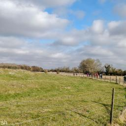Walk: Charney Bassett north