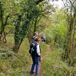 Walk: Longworth - Thames - Buckland