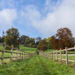 Around Turville