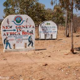 Roadside Tanzania 2009 ~ Signs and vines
