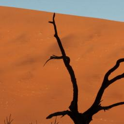 Namibia 2011, David Rogers Photo Workshop