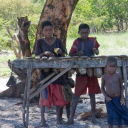There are Marimba's like this is many of the villages in the Western Province